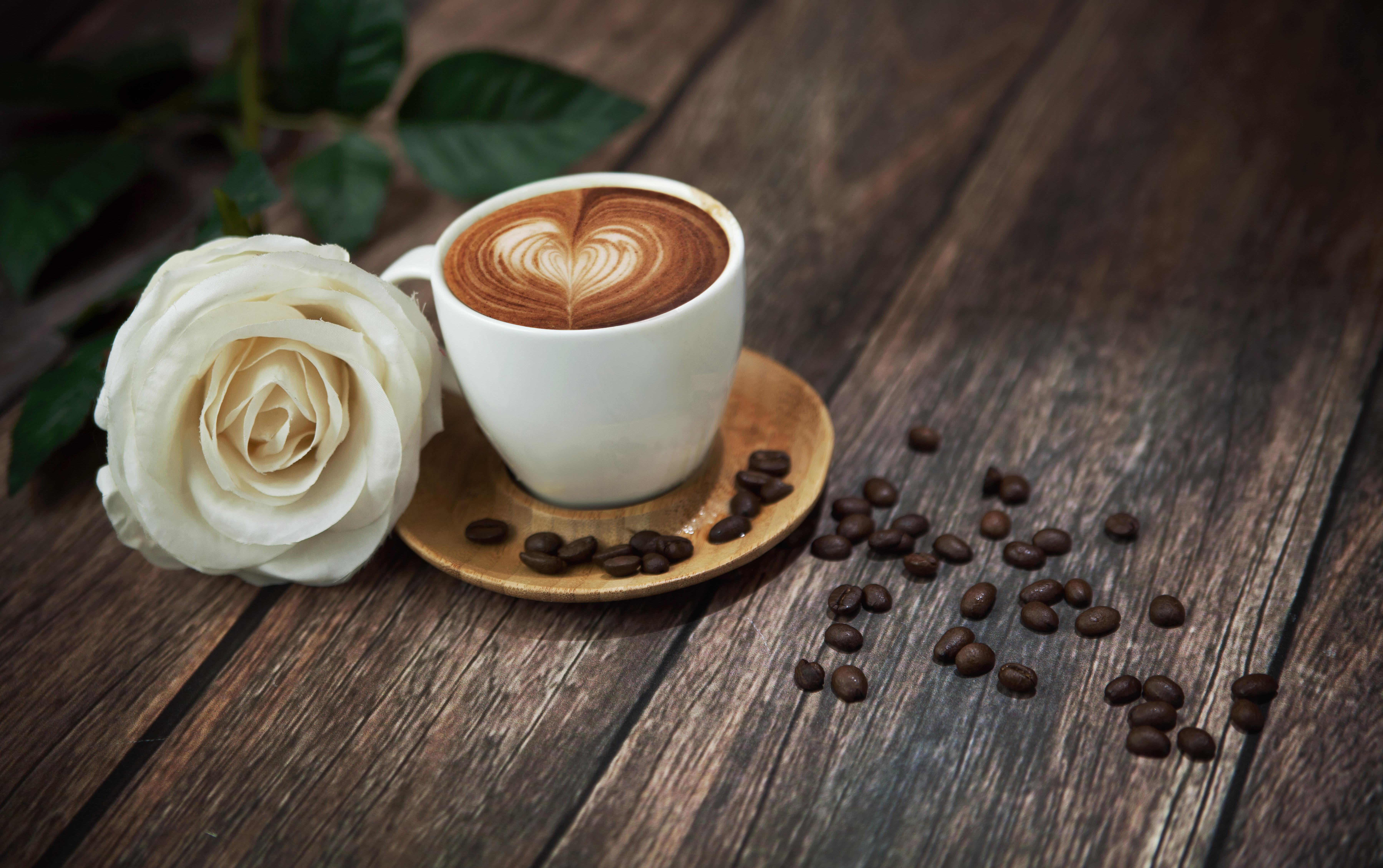 Чашка кофе с розой