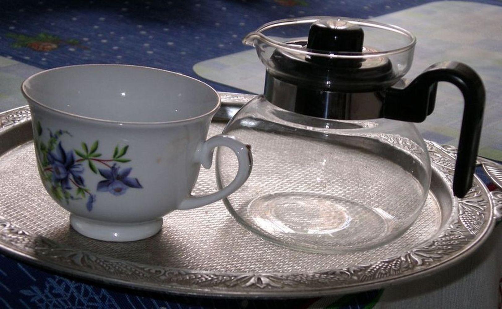 Фото заварочного чайника «AXON»