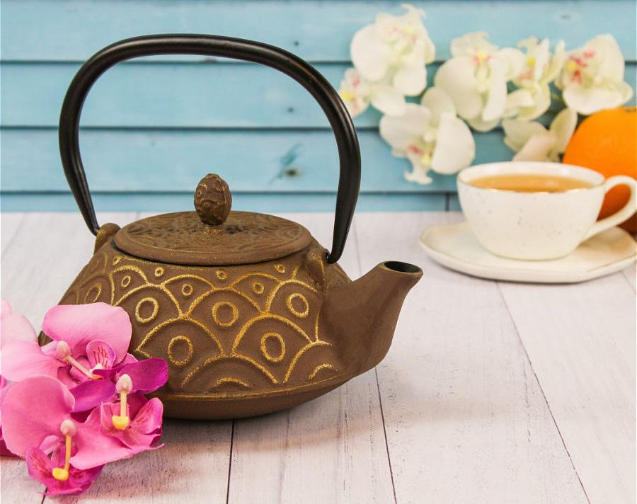 Чугунный чайник Mayer Boch