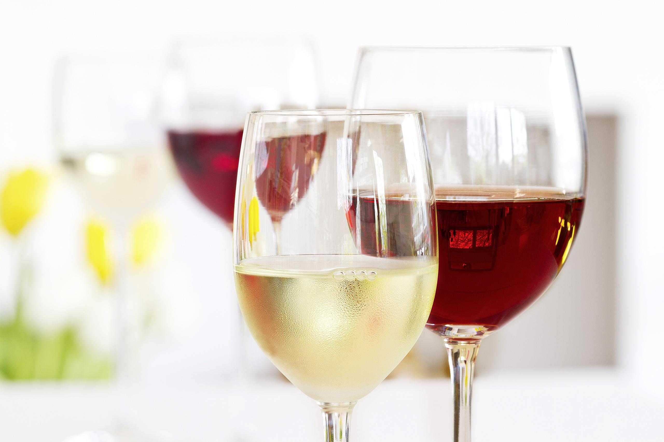 Фото бокалов для вина